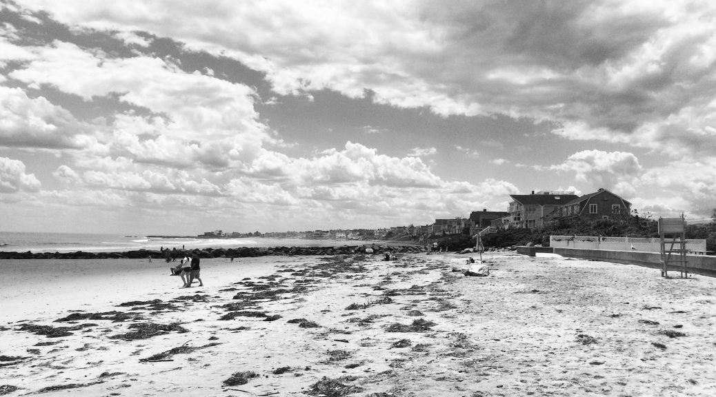 admin – The Coastal Society